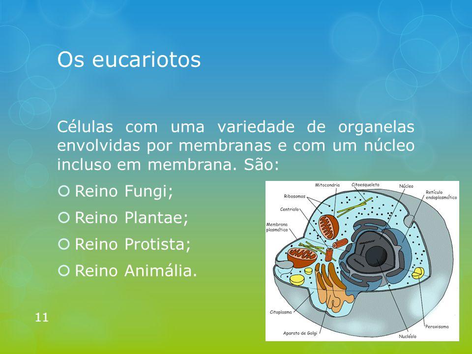Os eucariotos Células com uma variedade de organelas envolvidas por membranas e com um núcleo incluso em membrana. São: