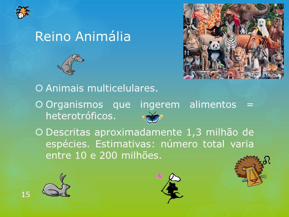 Reino Animália Animais multicelulares.