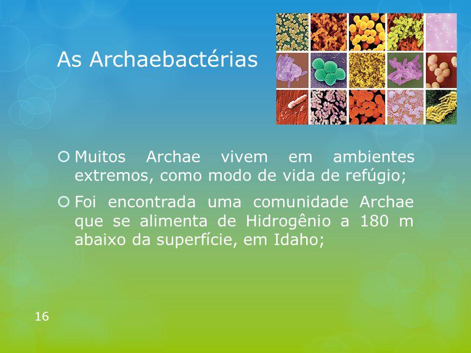 As Archaebactérias Muitos Archae vivem em ambientes extremos, como modo de vida de refúgio;
