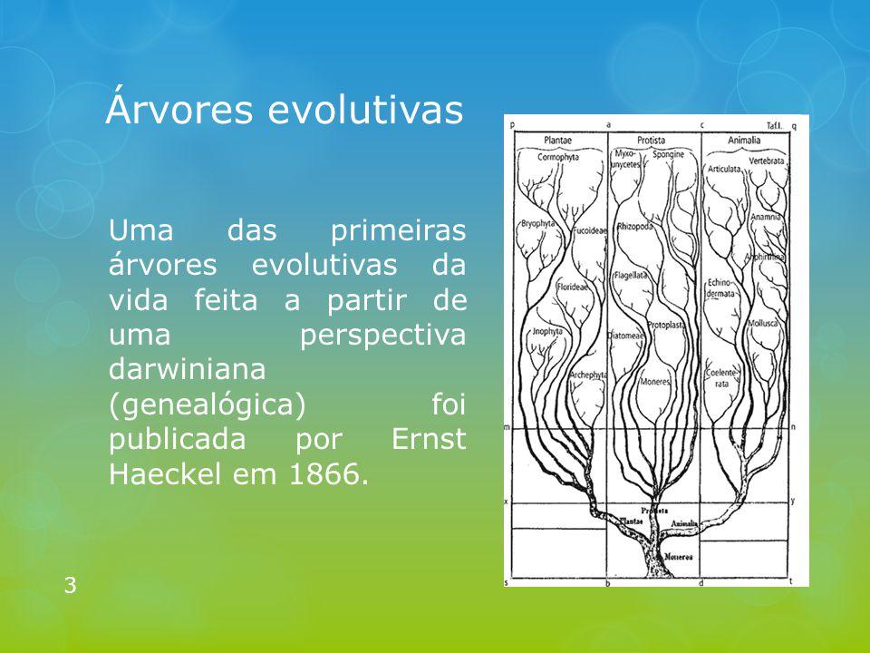 Árvores evolutivas
