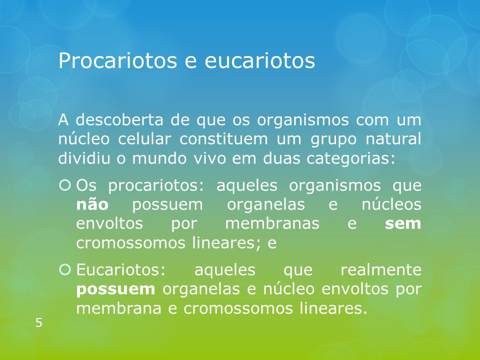 Procariotos e eucariotos
