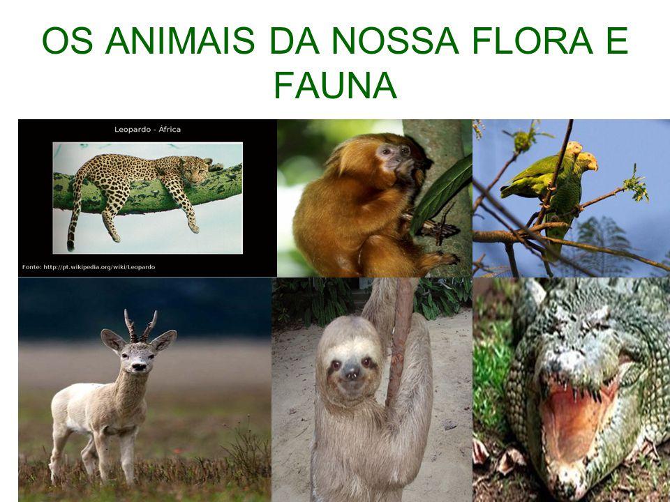 OS ANIMAIS DA NOSSA FLORA E FAUNA
