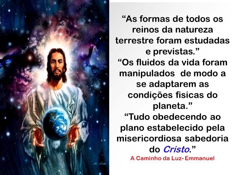 A Caminho da Luz- Emmanuel