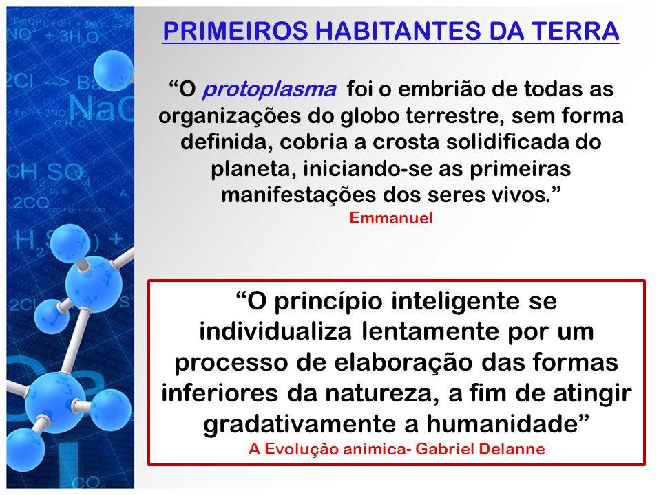 PRIMEIROS HABITANTES DA TERRA