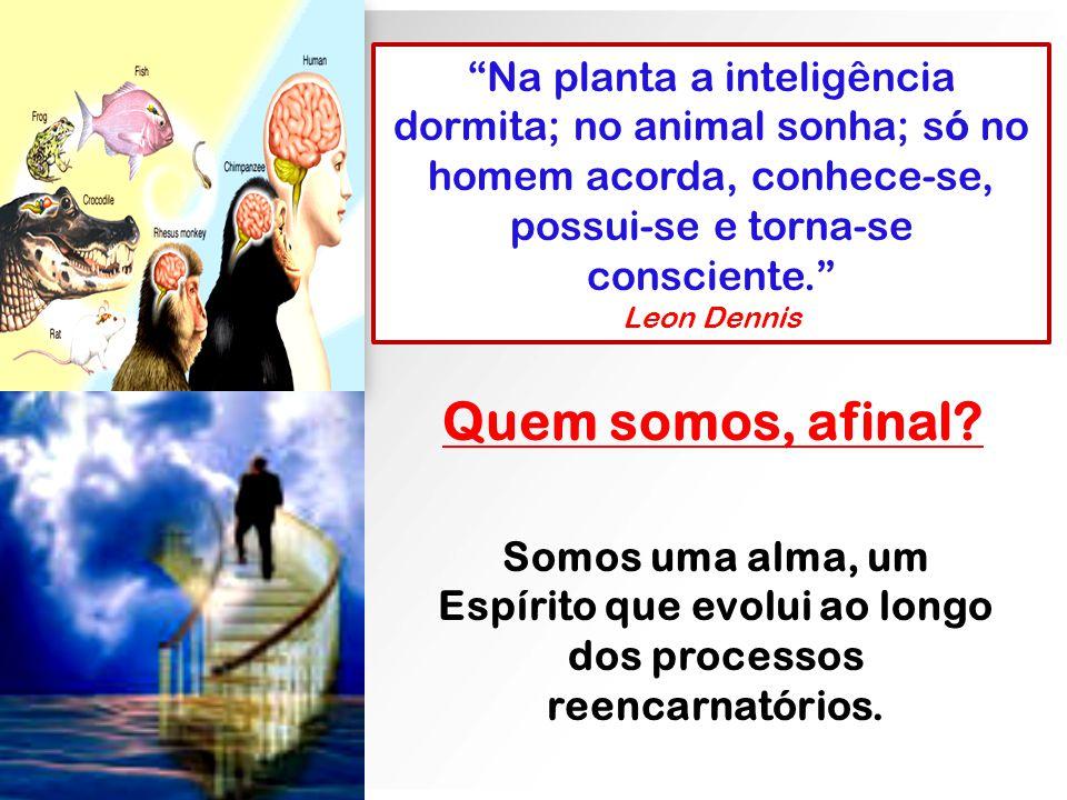 Na planta a inteligência dormita; no animal sonha; só no homem acorda, conhece-se, possui-se e torna-se consciente.
