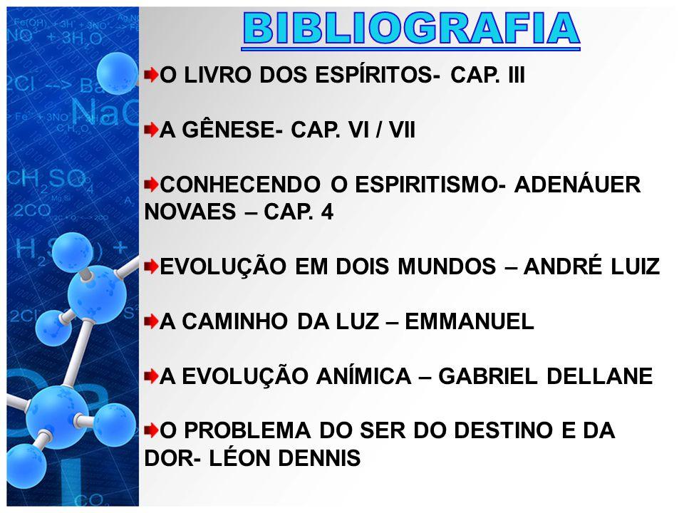 BIBLIOGRAFIA O LIVRO DOS ESPÍRITOS- CAP. III A GÊNESE- CAP. VI / VII