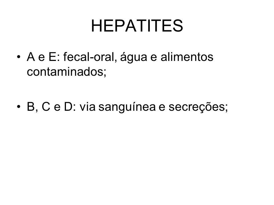 HEPATITES A e E: fecal-oral, água e alimentos contaminados;