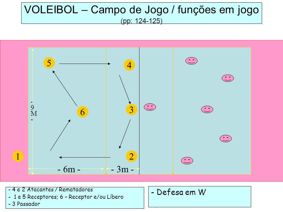 VOLEIBOL – Campo de Jogo / funções em jogo (pp: 124-125)