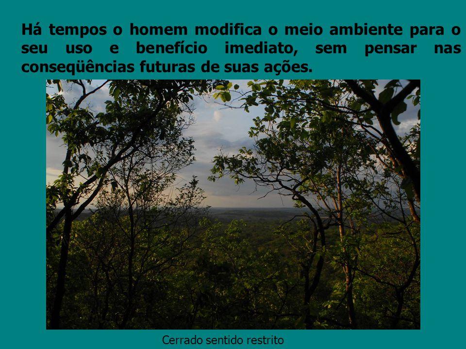Há tempos o homem modifica o meio ambiente para o seu uso e benefício imediato, sem pensar nas conseqüências futuras de suas ações.