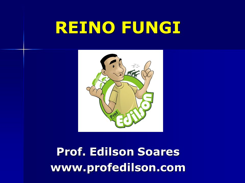 REINO FUNGI Prof. Edilson Soares www.profedilson.com