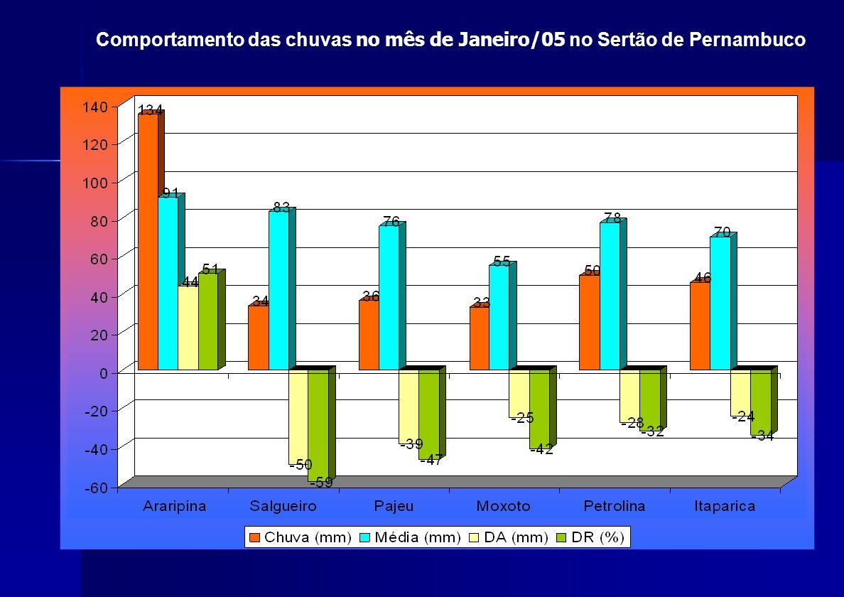 Comportamento das chuvas no mês de Janeiro/05 no Sertão de Pernambuco