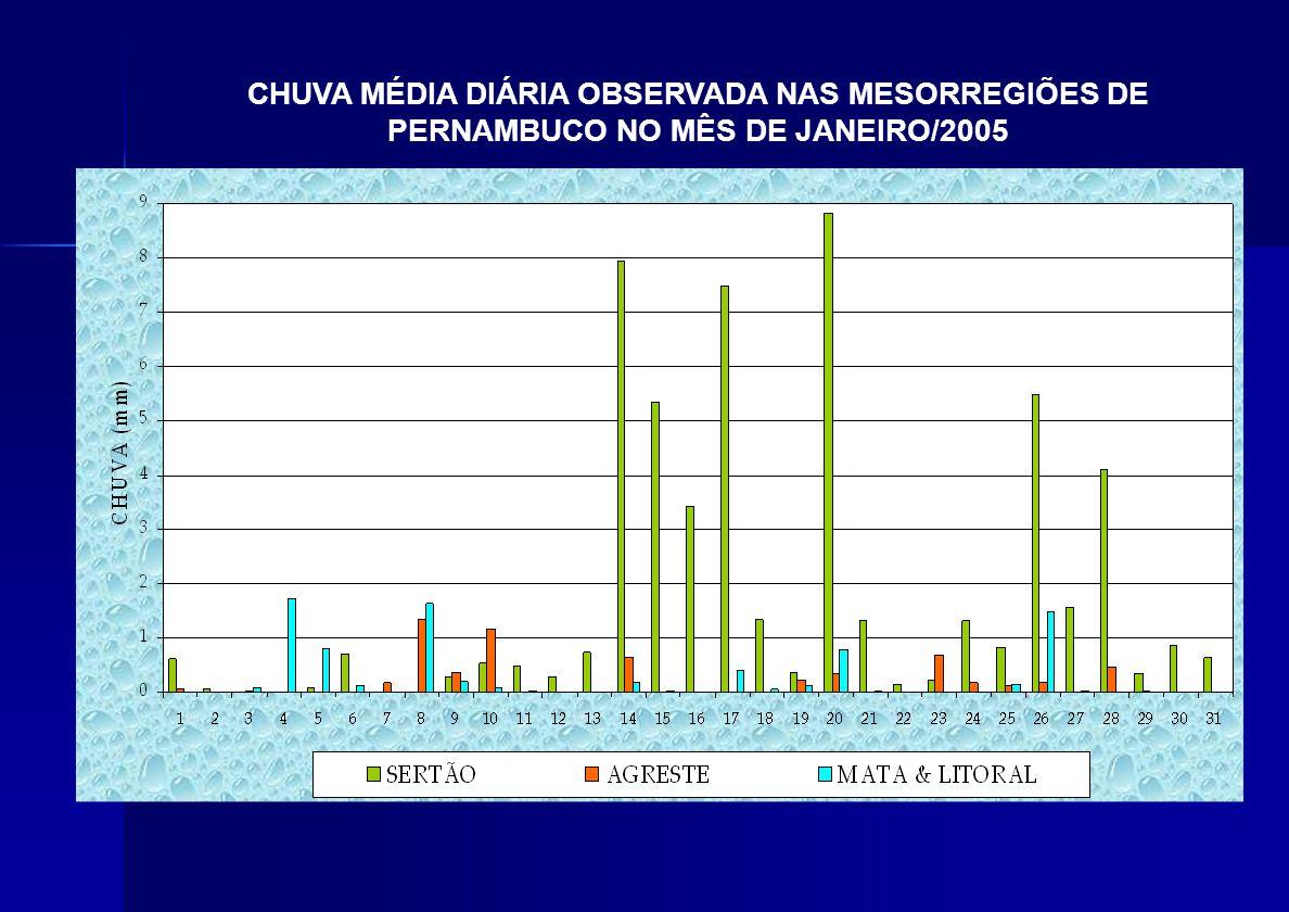 CHUVA MÉDIA DIÁRIA OBSERVADA NAS MESORREGIÕES DE PERNAMBUCO NO MÊS DE JANEIRO/2005