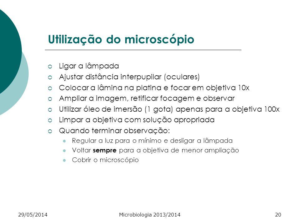 Utilização do microscópio