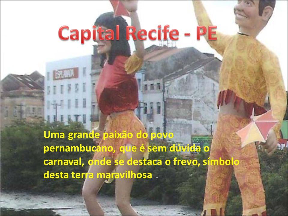 Uma grande paixão do povo pernambucano, que é sem dúvida o carnaval, onde se destaca o frevo, símbolo desta terra maravilhosa .
