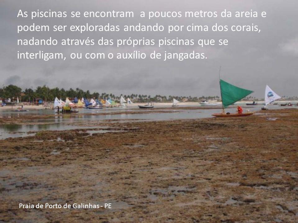 Praia de Porto de Galinhas - PE