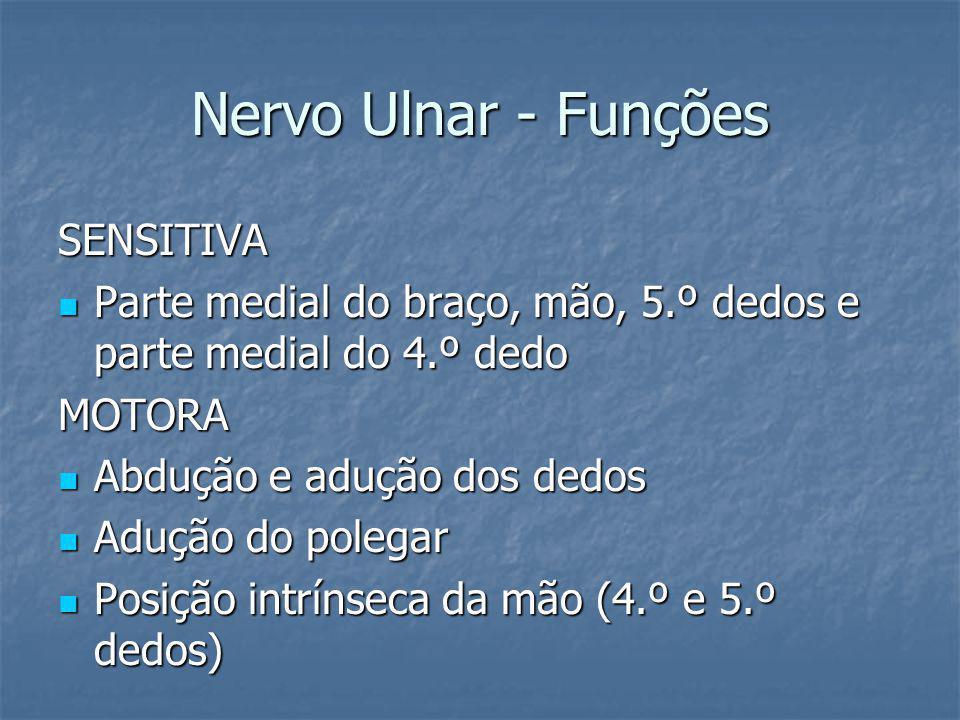 Nervo Ulnar - Funções SENSITIVA