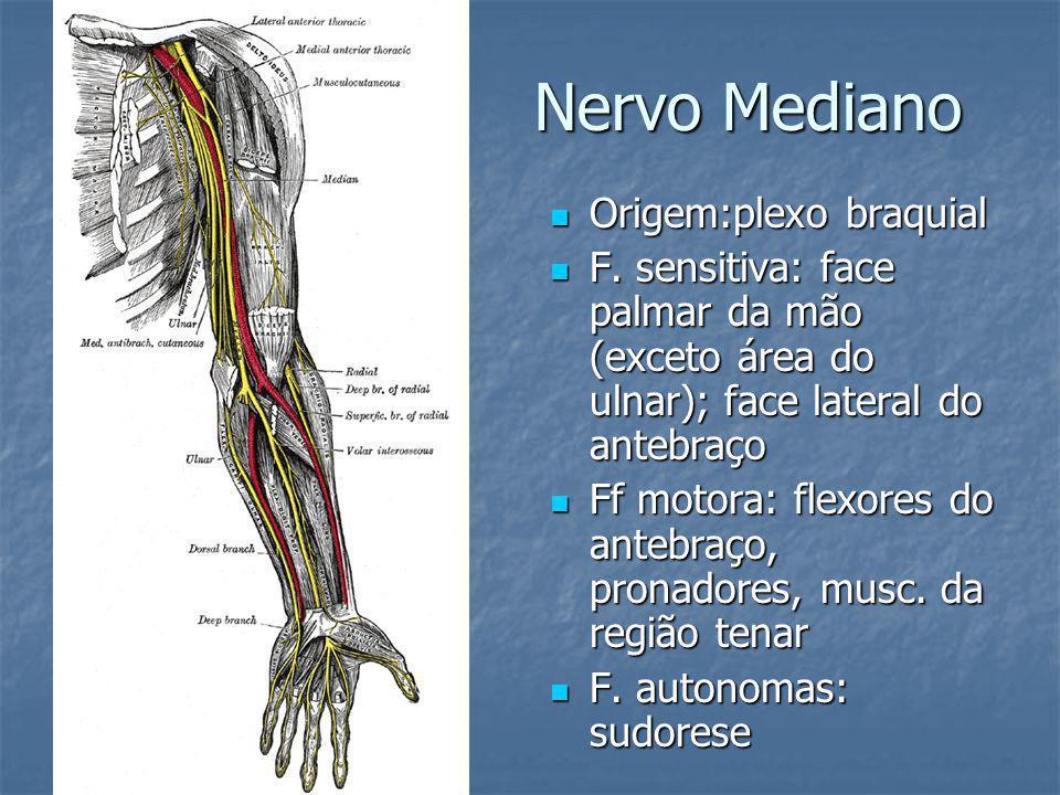 Nervo Mediano Origem:plexo braquial
