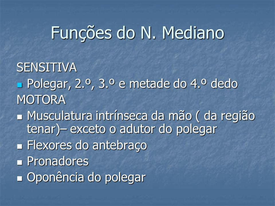 Funções do N. Mediano SENSITIVA Polegar, 2.º, 3.º e metade do 4.º dedo