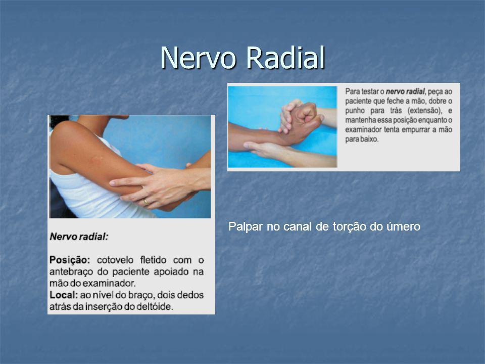 Nervo Radial Palpar no canal de torção do úmero