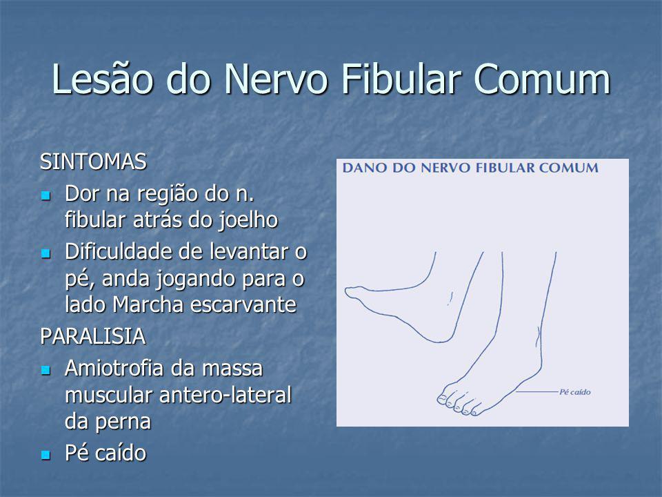 Lesão do Nervo Fibular Comum