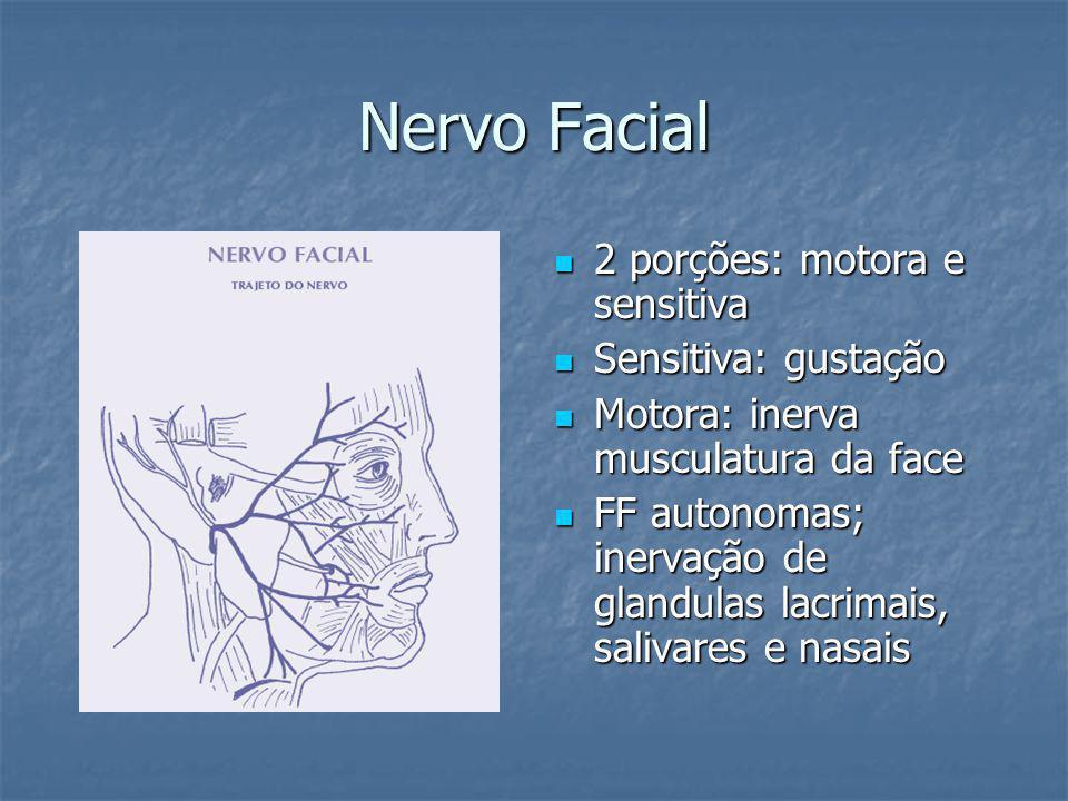 Nervo Facial 2 porções: motora e sensitiva Sensitiva: gustação