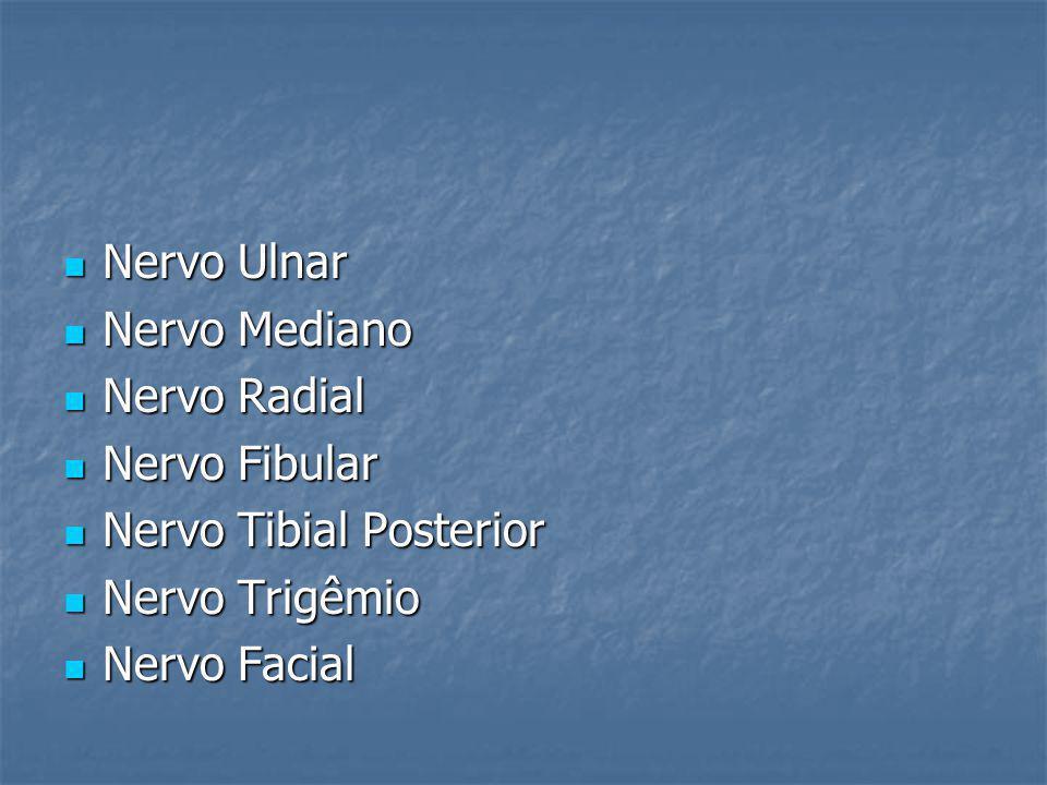 Nervo Ulnar Nervo Mediano. Nervo Radial. Nervo Fibular. Nervo Tibial Posterior. Nervo Trigêmio.