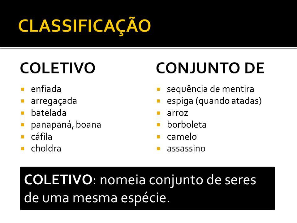 CLASSIFICAÇÃO COLETIVO CONJUNTO DE