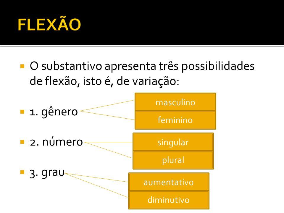 FLEXÃO O substantivo apresenta três possibilidades de flexão, isto é, de variação: 1. gênero. 2. número.