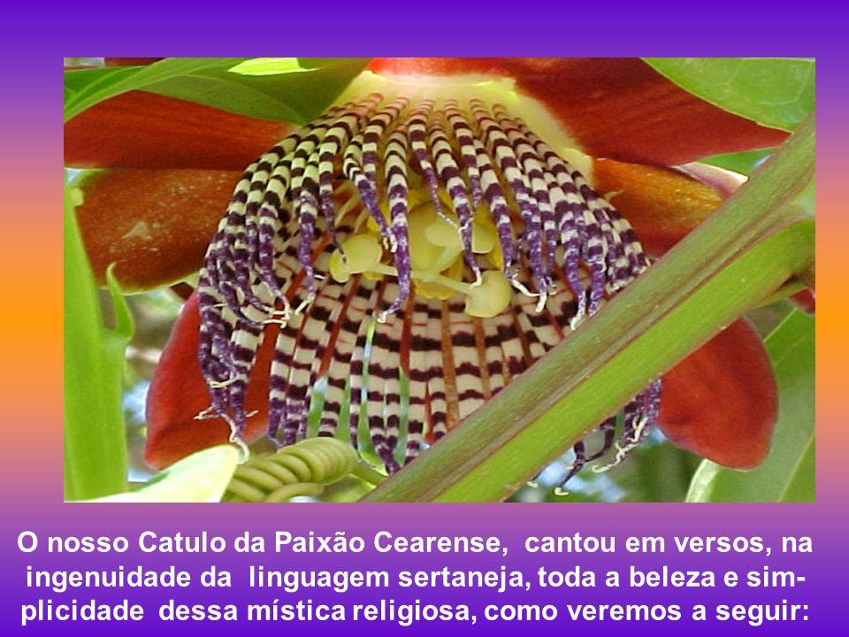 O nosso Catulo da Paixão Cearense, cantou em versos, na ingenuidade da linguagem sertaneja, toda a beleza e sim-plicidade dessa mística religiosa, como veremos a seguir: