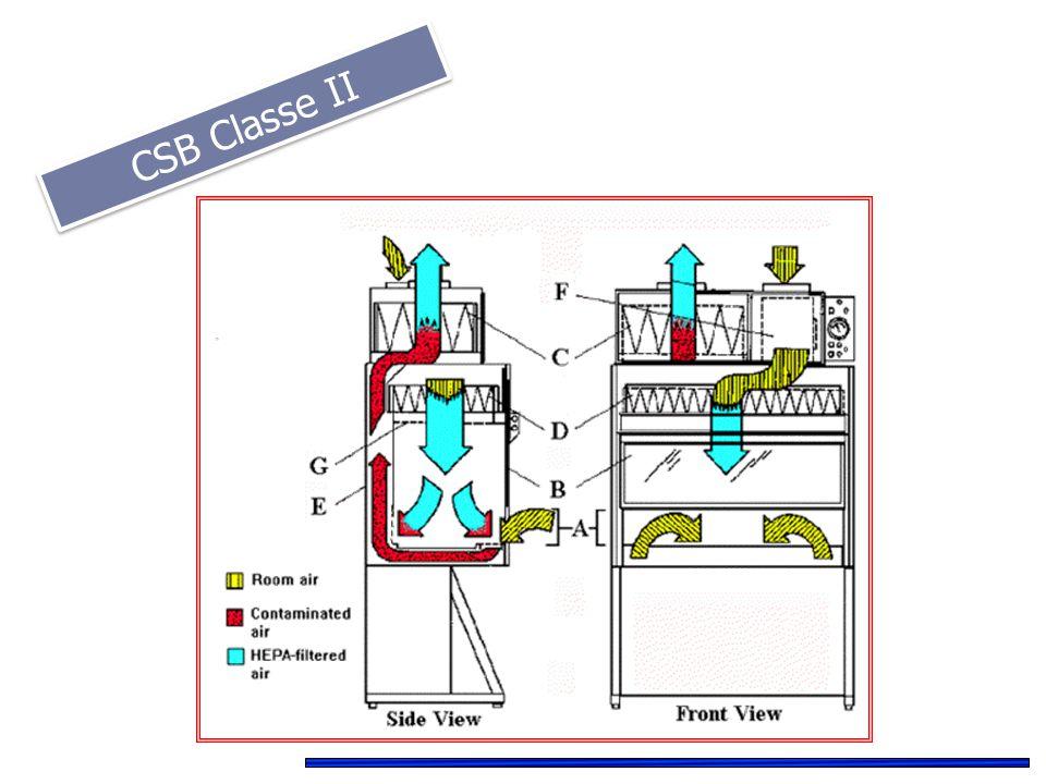 CSB Classe II