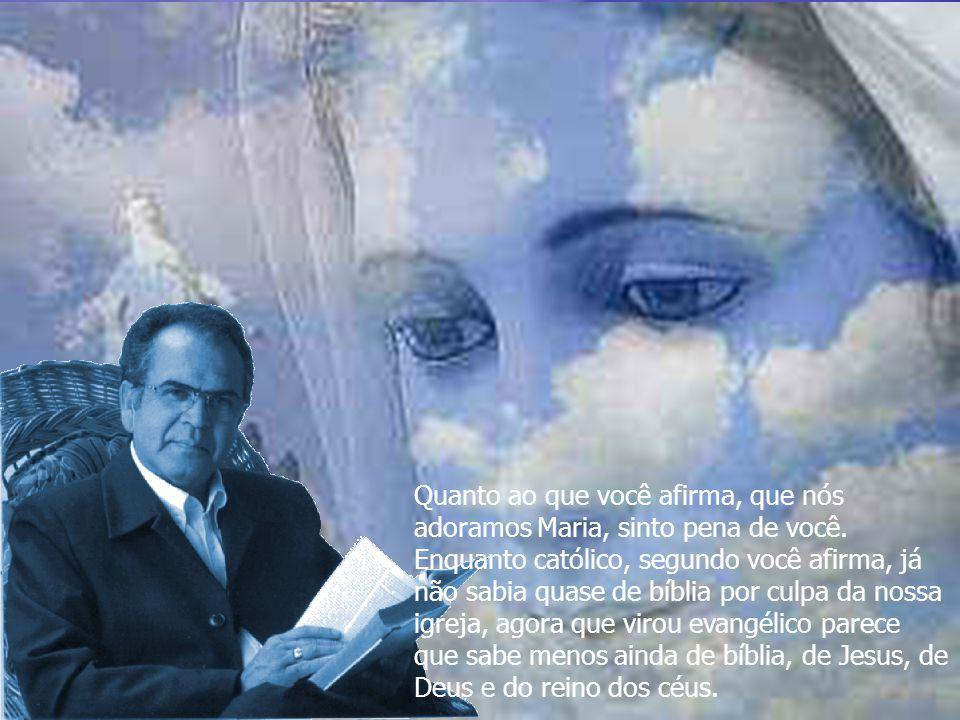 Quanto ao que você afirma, que nós adoramos Maria, sinto pena de você