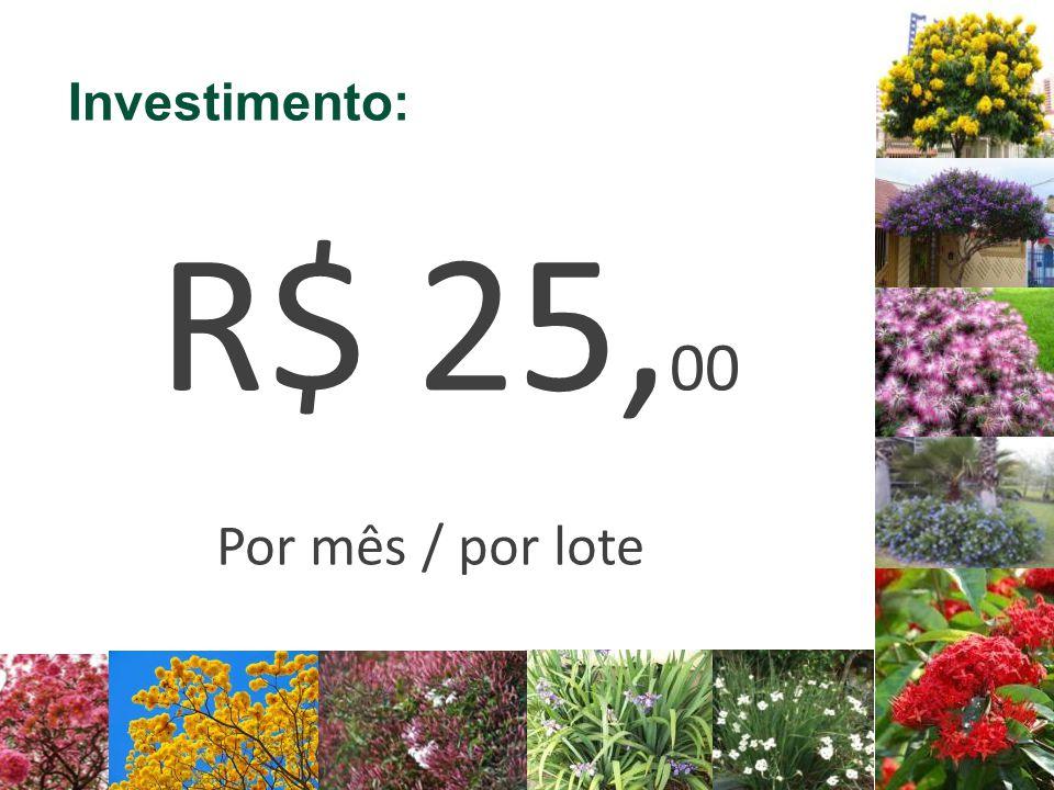 Investimento: R$ 25,00 Por mês / por lote