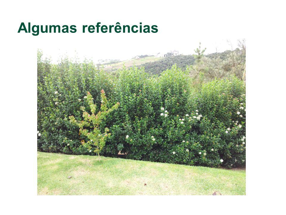 Algumas referências Exemplo de muro verde.