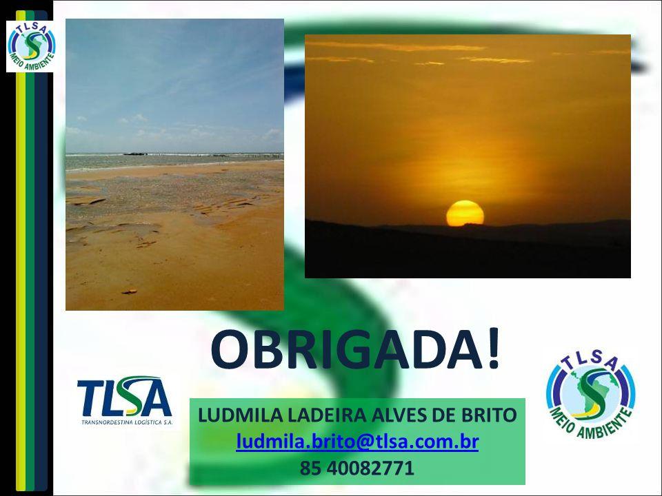 LUDMILA LADEIRA ALVES DE BRITO
