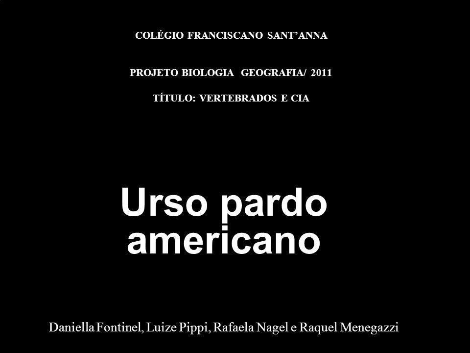 Daniella Fontinel, Luize Pippi, Rafaela Nagel e Raquel Menegazzi