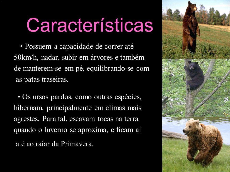 Características • Possuem a capacidade de correr até