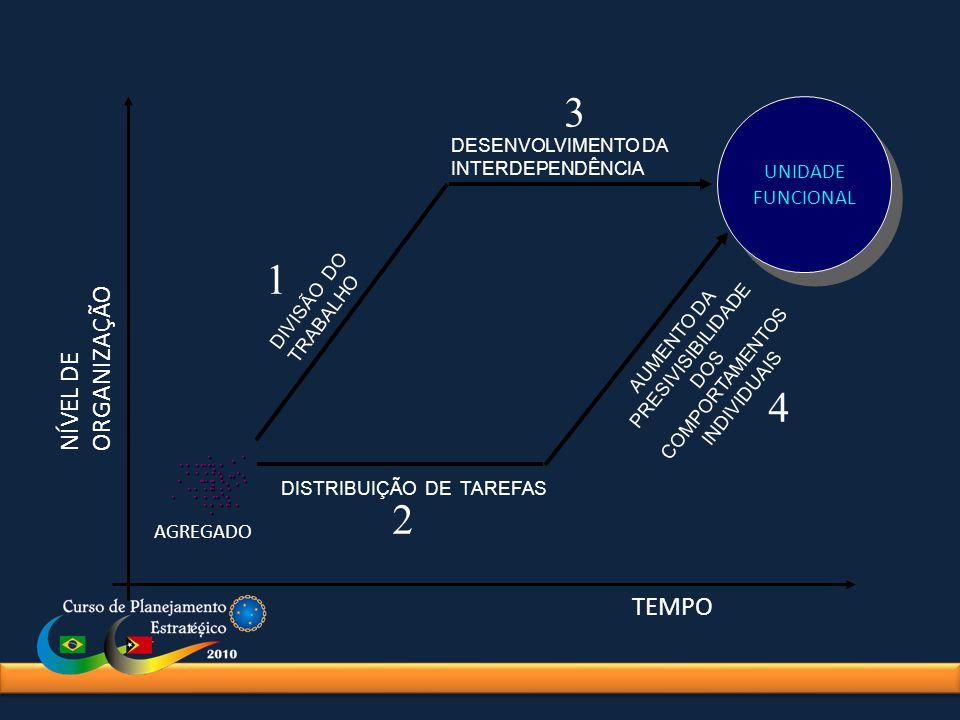 3 1 4 2 NÍVEL DE ORGANIZAÇÃO TEMPO UNIDADE FUNCIONAL . . . . . . . . .