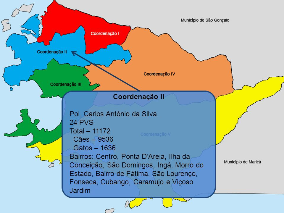 Coordenação II Pol. Carlos Antônio da Silva. 24 PVS. Total – 11172. Cães – 9536. Gatos – 1636.