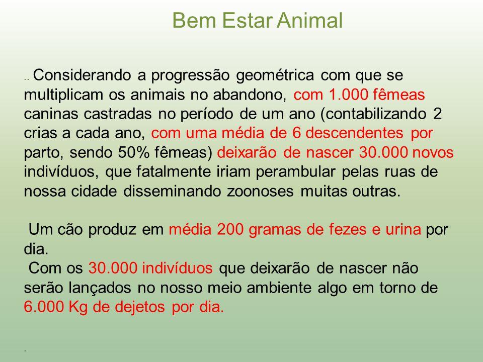 Um cão produz em média 200 gramas de fezes e urina por dia.
