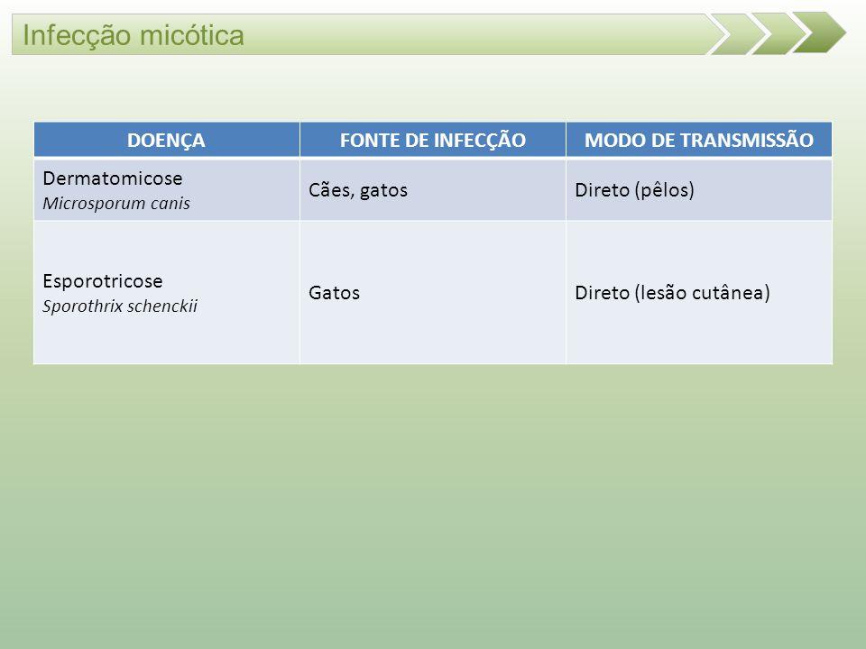 Infecção micótica DOENÇA FONTE DE INFECÇÃO MODO DE TRANSMISSÃO