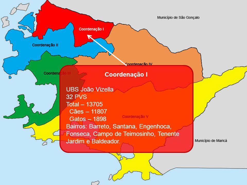Coordenação I UBS João Vizella. 32 PVS. Total – 13705. Cães – 11807. Gatos – 1898.