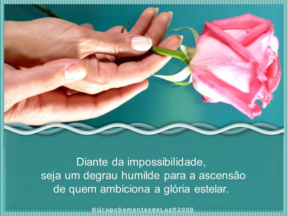 Diante da impossibilidade, seja um degrau humilde para a ascensão