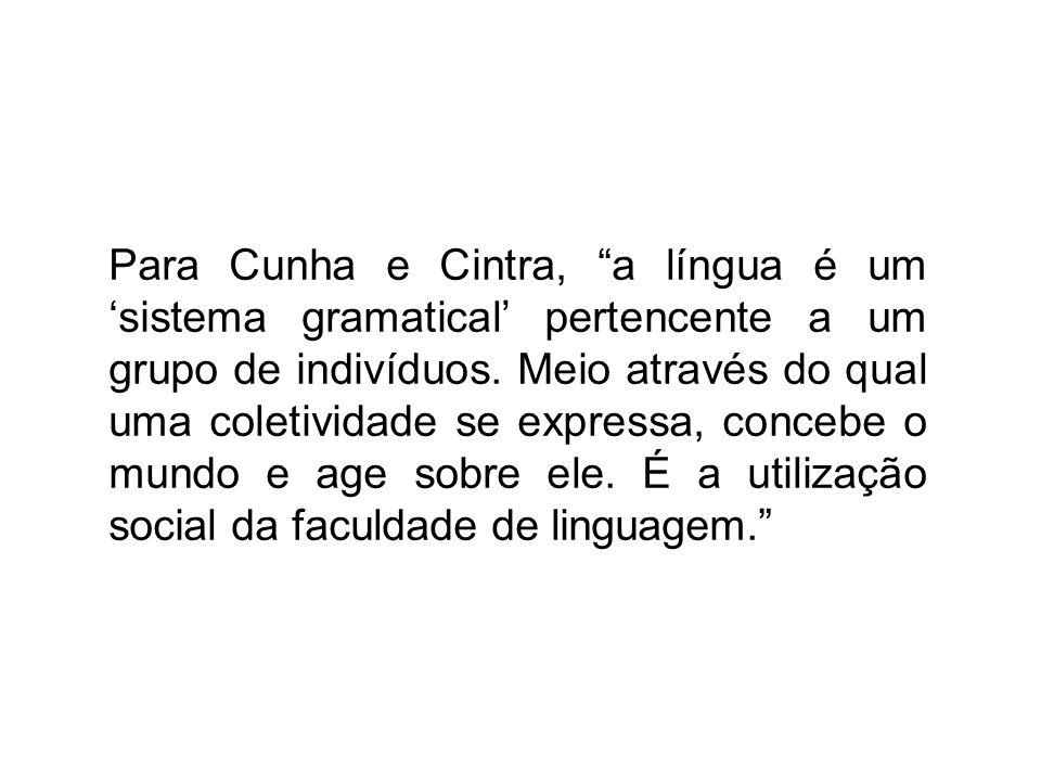 Para Cunha e Cintra, a língua é um 'sistema gramatical' pertencente a um grupo de indivíduos.