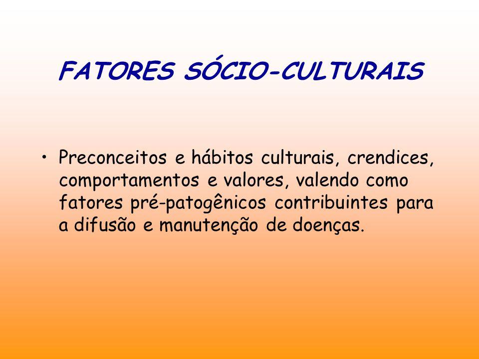 FATORES SÓCIO-CULTURAIS