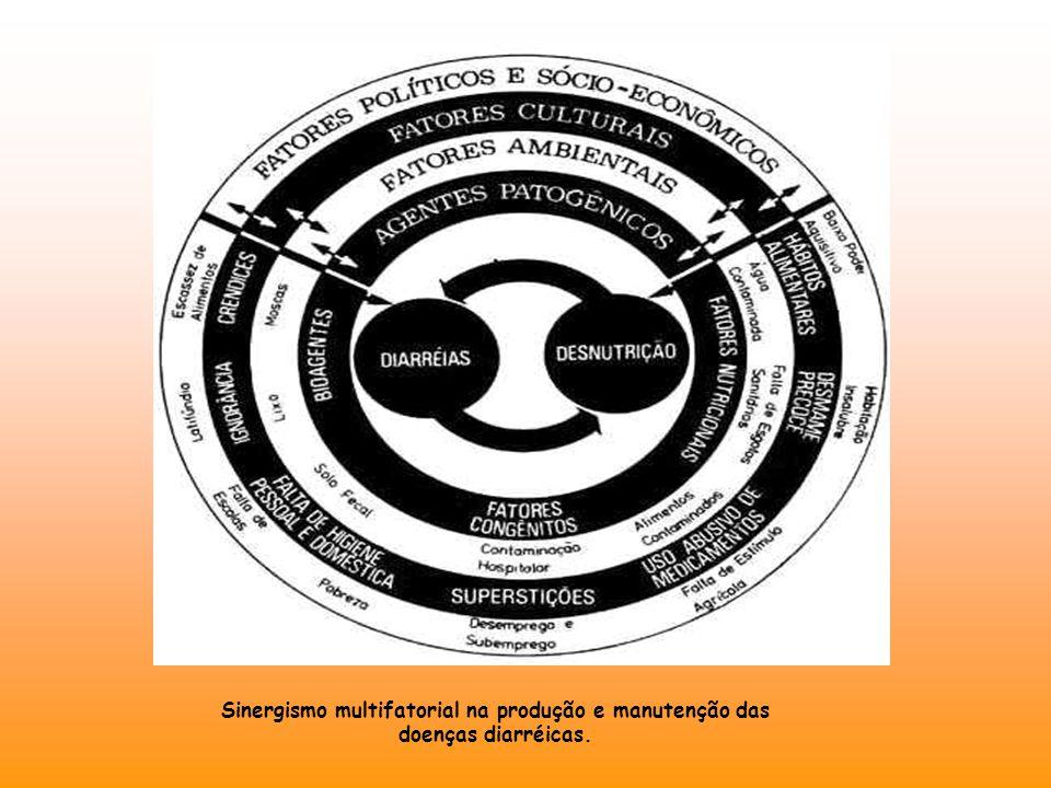 Sinergismo multifatorial na produção e manutenção das doenças diarréicas.