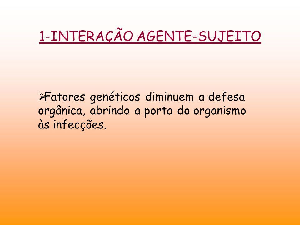1-INTERAÇÃO AGENTE-SUJEITO