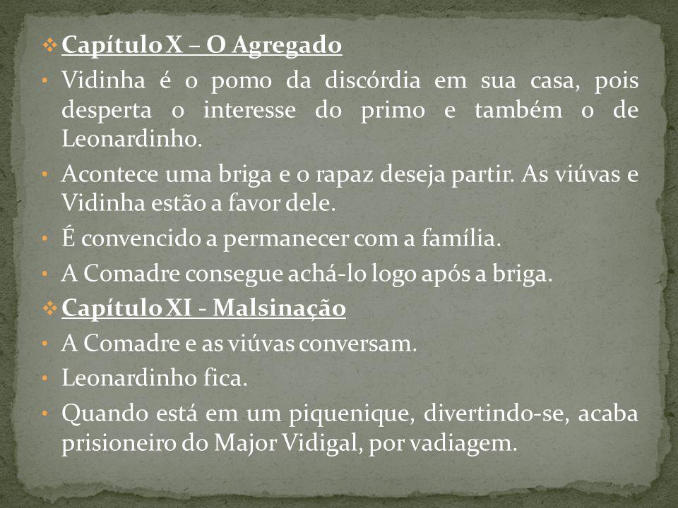 Capítulo X – O Agregado Vidinha é o pomo da discórdia em sua casa, pois desperta o interesse do primo e também o de Leonardinho.