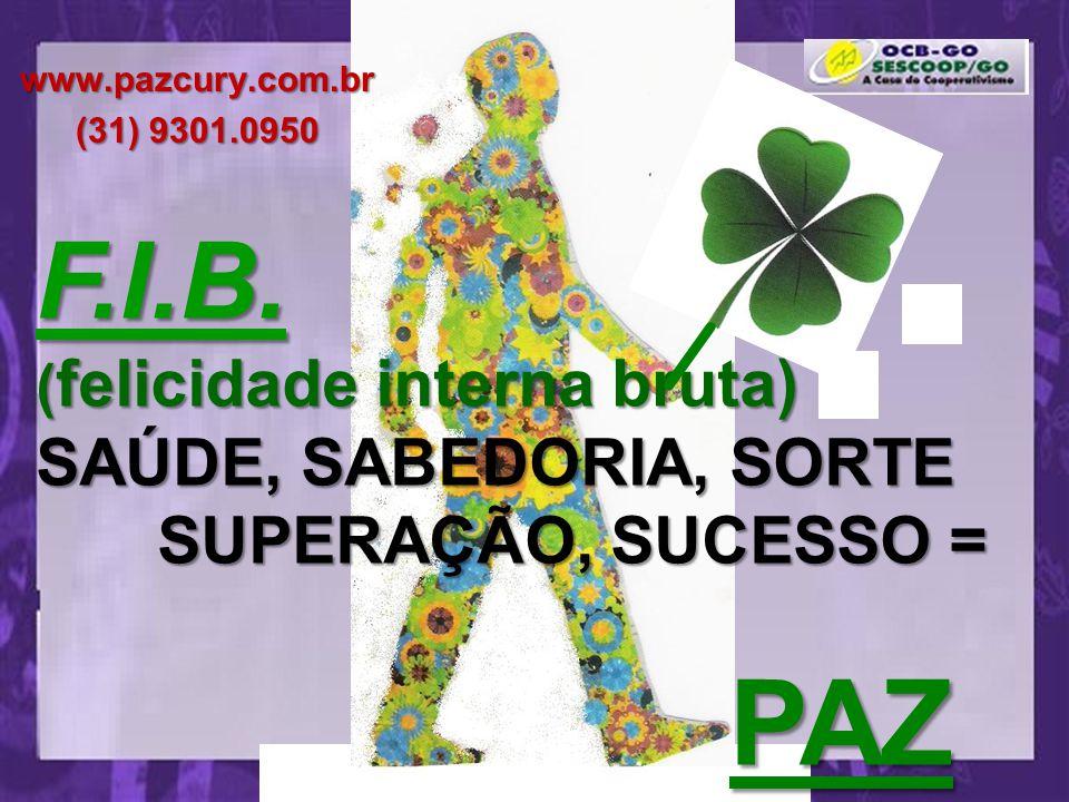 PAZ F.I.B. SUPERAÇÃO, SUCESSO =