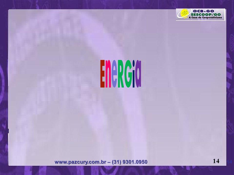 EneRGia 14 www.pazcury.com.br – (31) 9301.0950