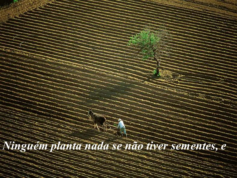 Ninguém planta nada se não tiver sementes, e